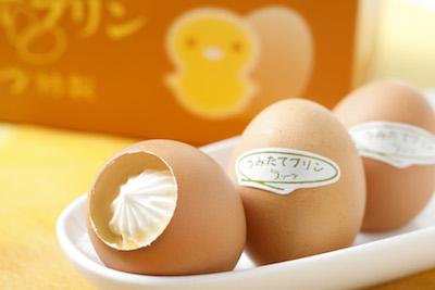 卵の殻を入れ物に、生まれたての卵で作ったうみたてプリン10個入1,000円、1個から購入可。
